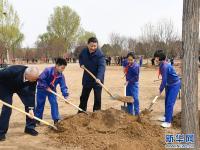 习主席带头植树,中国绿化领跑世界